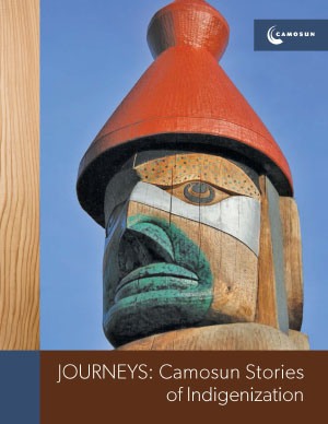 journeys-stories-of-indigenization-cover